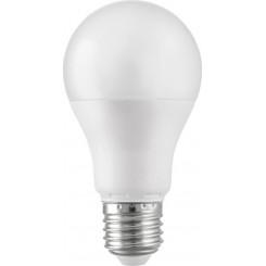 2RE271265 LED-12W-E27-CW-2R(600.411) Λάμπες